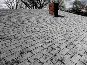 Roof Repair Minneapolis MN